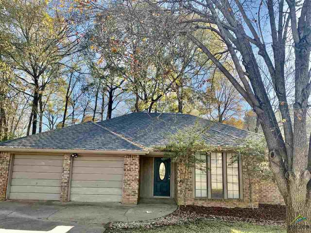 204 Stacy, Whitehouse, TX 75791 (MLS #10129548) :: Griffin Real Estate Group