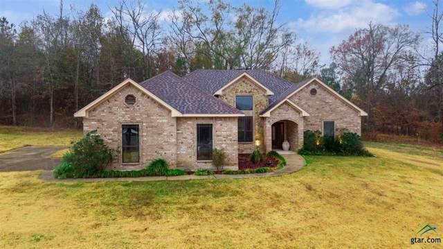 10642 S Interstate 20 E, Waskom, TX 75692 (MLS #10129698) :: Griffin Real Estate Group