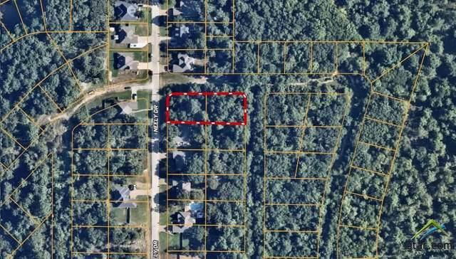 Lot 369 & 384 Neely Dr., Bullard, TX 75757 (MLS #10129704) :: Griffin Real Estate Group