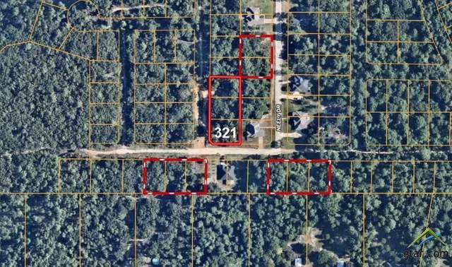 Lot 321,320,319 Loel, Bullard, TX 75757 (MLS #10129711) :: Griffin Real Estate Group