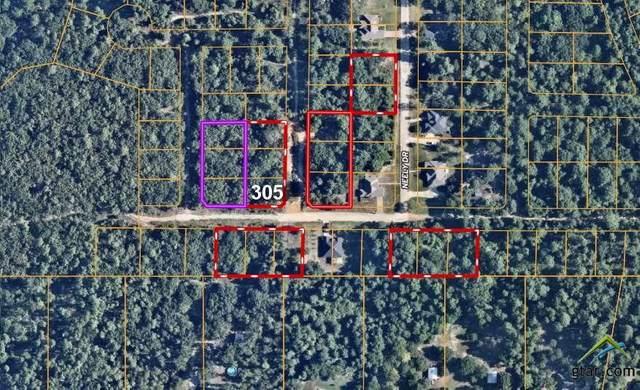 Lot 305,304,303 Loel, Bullard, TX 75757 (MLS #10129712) :: Griffin Real Estate Group