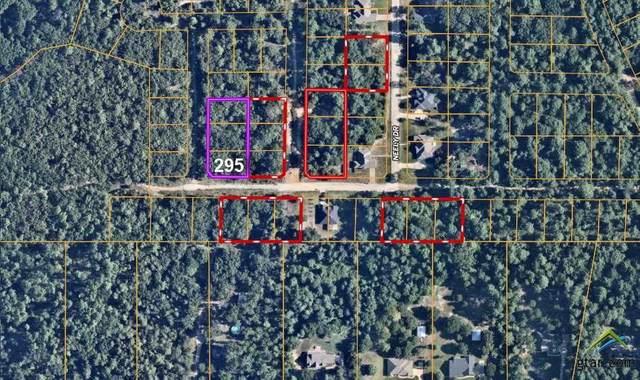 Lot 295,296,297 Loel, Bullard, TX 75757 (MLS #10129713) :: Griffin Real Estate Group