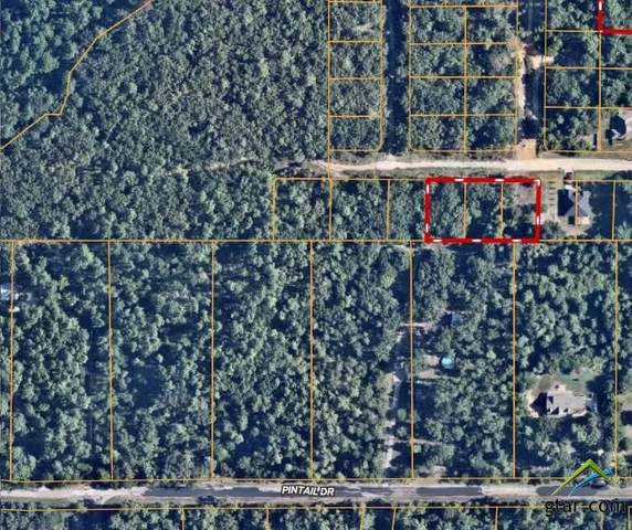 Lot 448,449,450 Pierwood Place, Bullard, TX 75757 (MLS #10129714) :: Griffin Real Estate Group