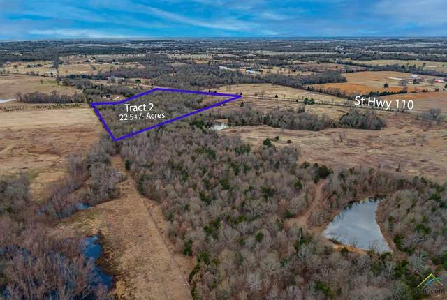 Tract 2 State Hwy 110, Grand Saline, TX 75140 (MLS #10130409) :: Griffin Real Estate Group