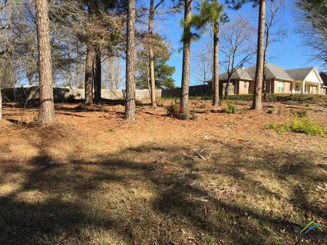 213 Hagan Rd, Whitehouse, TX 75791 (MLS #10130434) :: Griffin Real Estate Group
