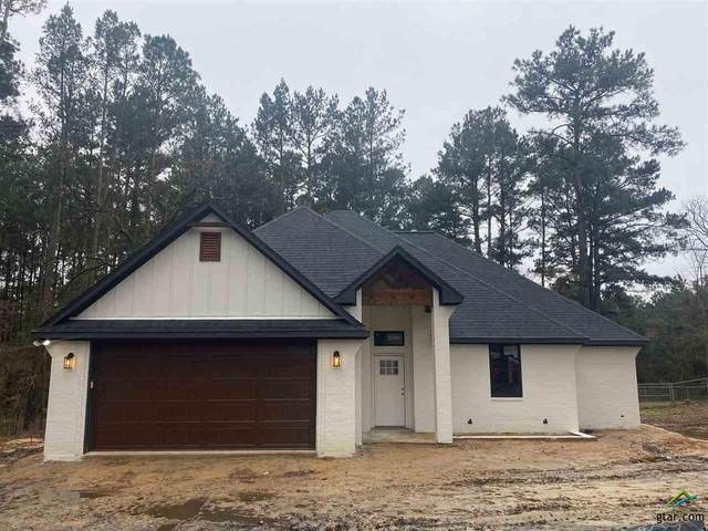 17137 Mary Martin Dr., Flint, TX 75762 (MLS #10130621) :: Griffin Real Estate Group