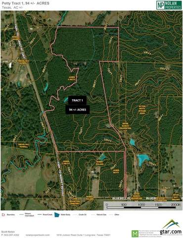 TBD Fm 2263 Tract 1, Gilmer, TX 75644 (MLS #10131563) :: The Wampler Wolf Team