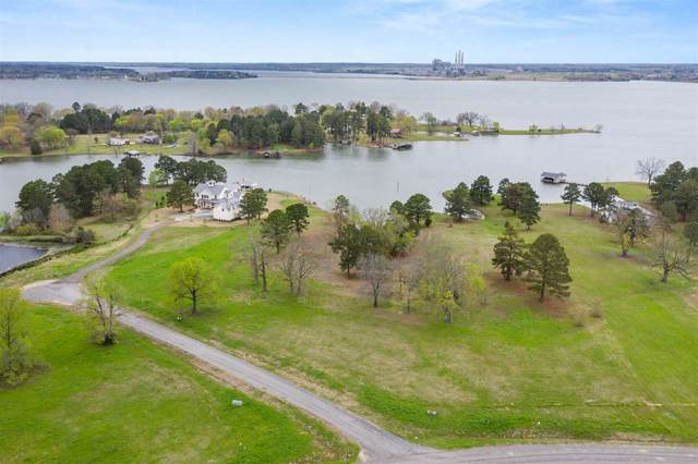 TBD Pr 52320, Pittsburg, TX 75686 (MLS #10132878) :: Griffin Real Estate Group
