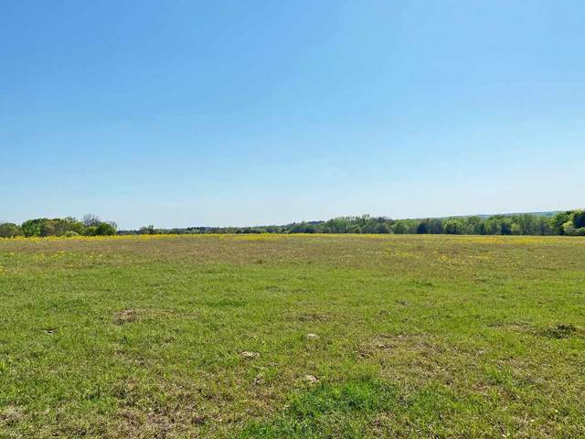 TBD Lot 29 Cattle Run, Tyler, TX 75703 (MLS #10132993) :: RE/MAX Professionals - The Burks Team