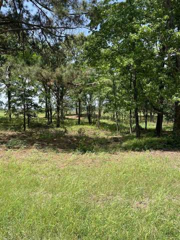 Lot 2A Acr 450, Palestine, TX 75803 (MLS #10134220) :: The Edwards Team