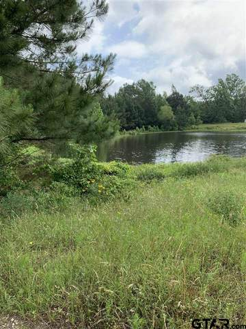 40 ACRES Highway 135, Troup, TX 75789 (MLS #10135365) :: Griffin Real Estate Group