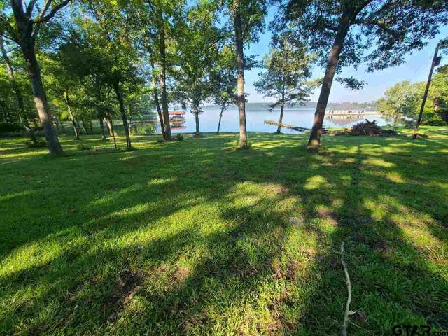 16054 Eastside Road, Tyler, TX 75707 (MLS #10136163) :: Griffin Real Estate Group