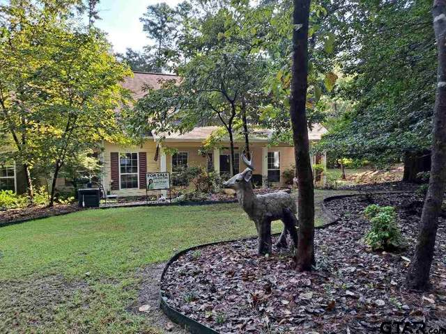 116 Oriole Cove, Holly Lake Ranch, TX 75765 (MLS #10138113) :: Wood Real Estate Group