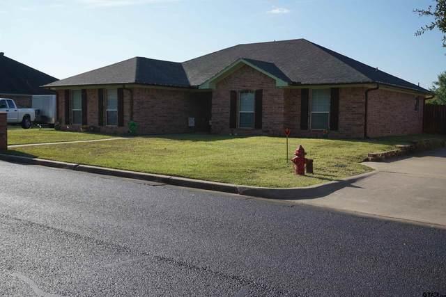 219 Amanda Court, Whitehouse, TX 75791 (MLS #10141060) :: Dee Martin Realty Group