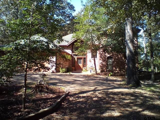 141 Rock Springs Path, Holly Lake Ranch, TX 75765 (MLS #10141151) :: Dee Martin Realty Group