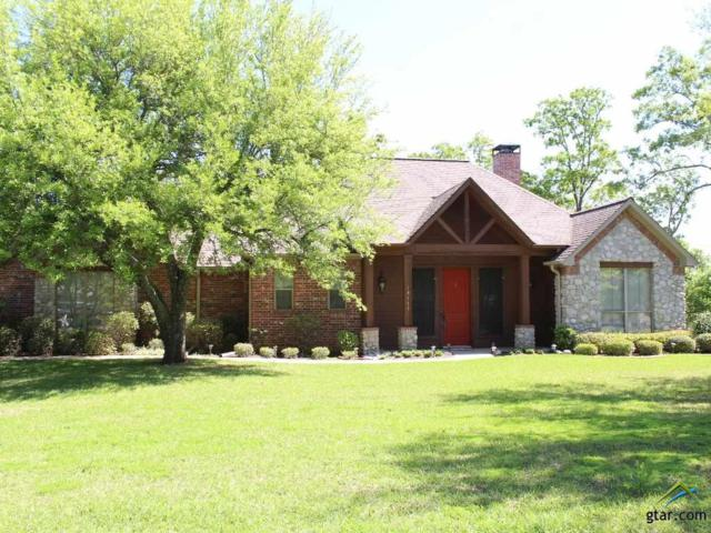 14163 Cr 193, Tyler, TX 75703 (MLS #10091495) :: The Wampler Wolf Team