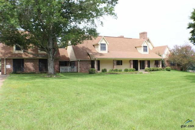 12838 C R 192, Tyler, TX 75703 (MLS #10091698) :: The Wampler Wolf Team