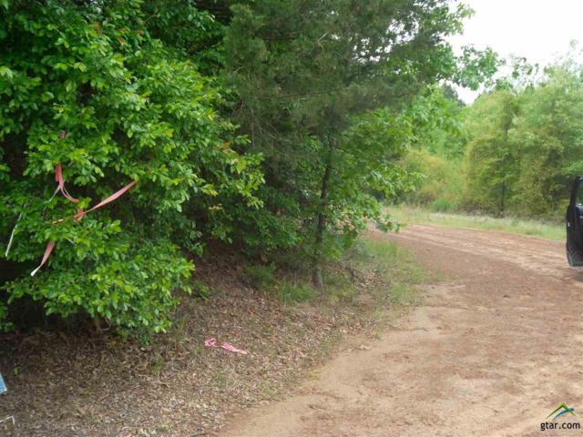 3844 Victory School Road, Avinger, TX 75630 (MLS #10093888) :: The Wampler Wolf Team