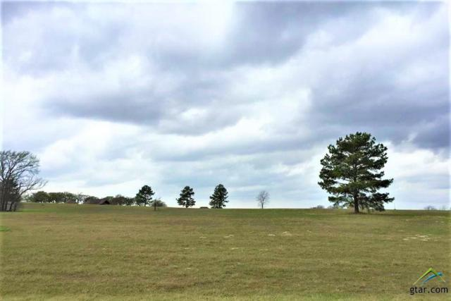 15585 Cr 424 (Stallion Lake Ranch), Lindale, TX 75771 (MLS #10097824) :: The Wampler Wolf Team