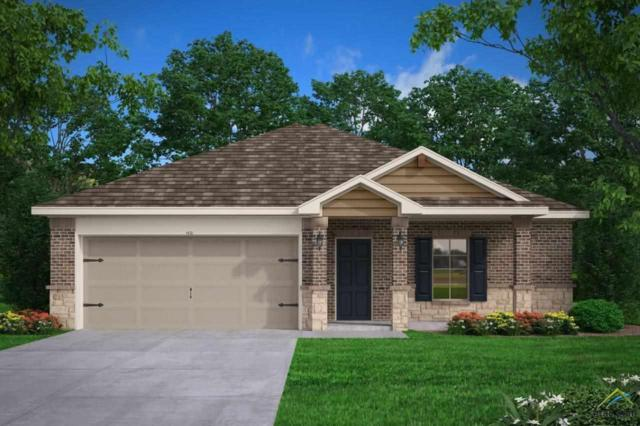 17338 Stacey Street, Lindale, TX 75771 (MLS #10098184) :: RE/MAX Professionals - The Burks Team
