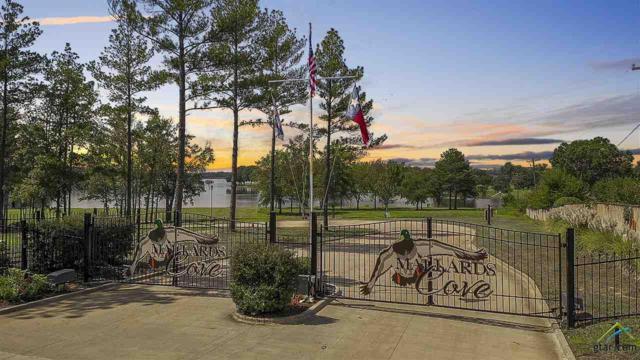 22204 Mallards Cove, Bullard, TX 75757 (MLS #10100842) :: RE/MAX Professionals - The Burks Team