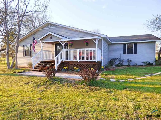 1234 County Road 4260, Cookville, TX 75558 (MLS #10105666) :: The Wampler Wolf Team