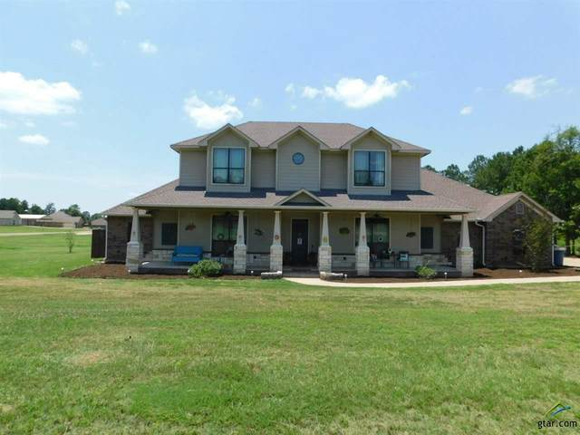 377 Tiger Lily, Diana, TX 75640 (MLS #10122774) :: Griffin Real Estate Group