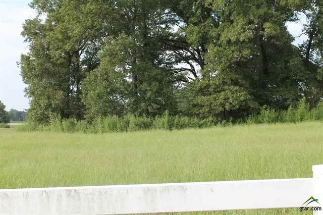 Lot 3A Block 4 Tbd Cr 188, Bullard, TX 75757 (MLS #10126750) :: Griffin Real Estate Group