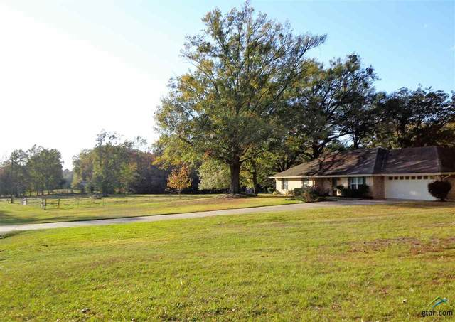 14829 County Road 2215, Tyler, TX 75707 (MLS #10127482) :: Griffin Real Estate Group