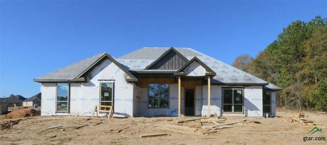 3508 Chapel View, Tyler, TX 75707 (MLS #10128798) :: Griffin Real Estate Group