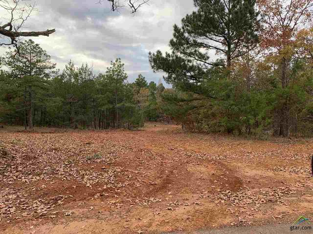 Tract 5 Old Tyler Rd., Whitehouse, TX 75791 (MLS #10128933) :: The Wampler Wolf Team