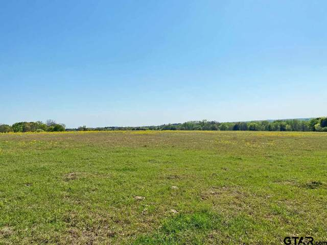 TBD Lot 27 Cattle Run, Tyler, TX 75703 (MLS #10132995) :: RE/MAX Professionals - The Burks Team