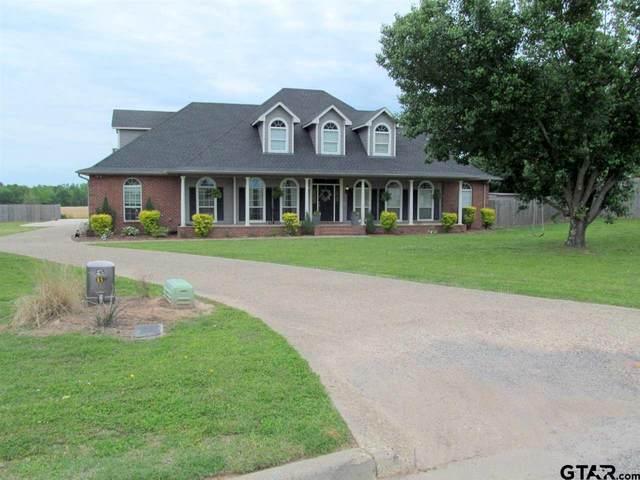 706 Hopper Ct., Winnsboro, TX 75494 (MLS #10133787) :: RE/MAX Professionals - The Burks Team
