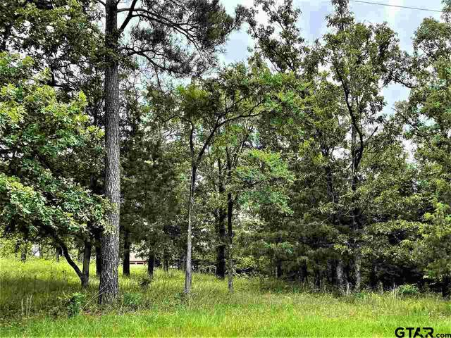 0017 Crazyhorse Dr., Lindale, TX 75771 (MLS #10135714) :: Realty ONE Group Rose