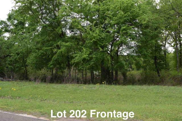 6500 Waters Edge Drive (Lot 202), Larue, TX 75770 (MLS #10054330) :: RE/MAX Professionals - The Burks Team