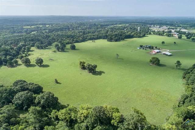 TBD Fm 16 E, Winona, TX 75792 (MLS #10115588) :: Griffin Real Estate Group