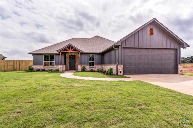 809 Sunny Meadows, Whitehouse, TX 75791 (MLS #10101781) :: RE/MAX Professionals - The Burks Team