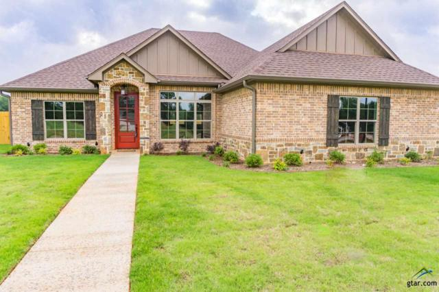 905 Sunny Meadows, Whitehouse, TX 75791 (MLS #10104283) :: RE/MAX Professionals - The Burks Team