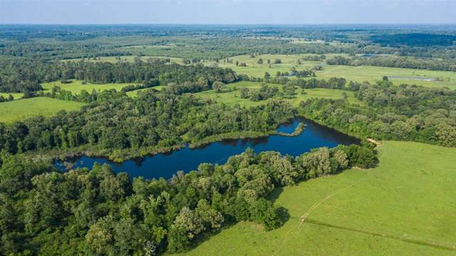 000 Cr 4621, Troup, TX 75789 (MLS #10135798) :: Griffin Real Estate Group