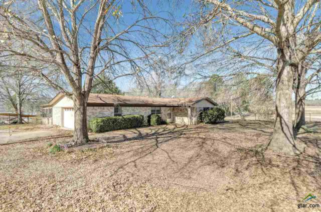 15684 Mcelroy Rd, Whitehouse, TX 75791 (MLS #10098368) :: RE/MAX Professionals - The Burks Team