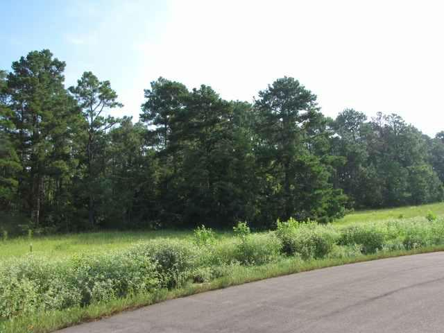 Lot 2, Blk 1 Pine Ridge Rd., Henderson, TX 75654 (MLS #10002757) :: Griffin Real Estate Group
