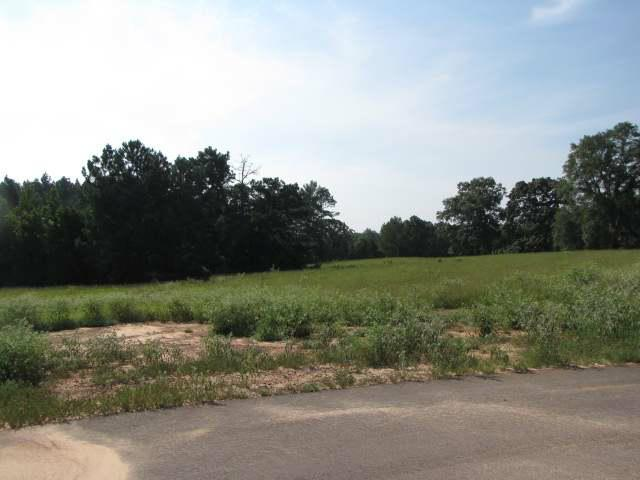 Lot 2, Blk 3 Conifer Lane, Henderson, TX 75654 (MLS #10002970) :: Griffin Real Estate Group