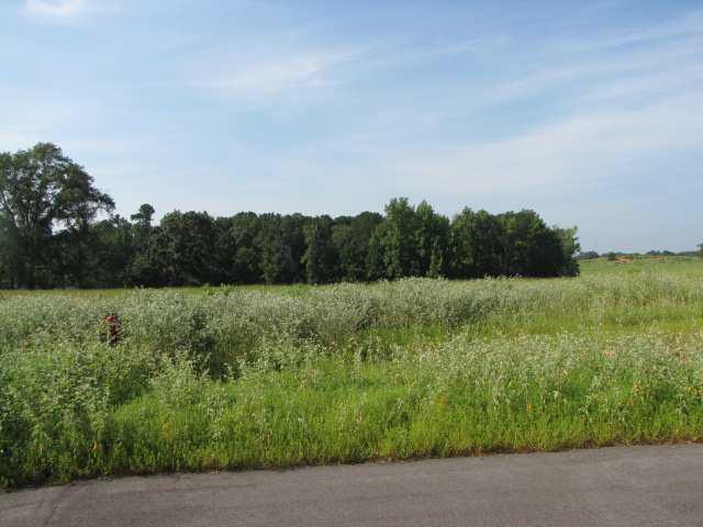 Lot 3, Blk 3 Conifer Lane, Henderson, TX 75654 (MLS #10002978) :: Griffin Real Estate Group