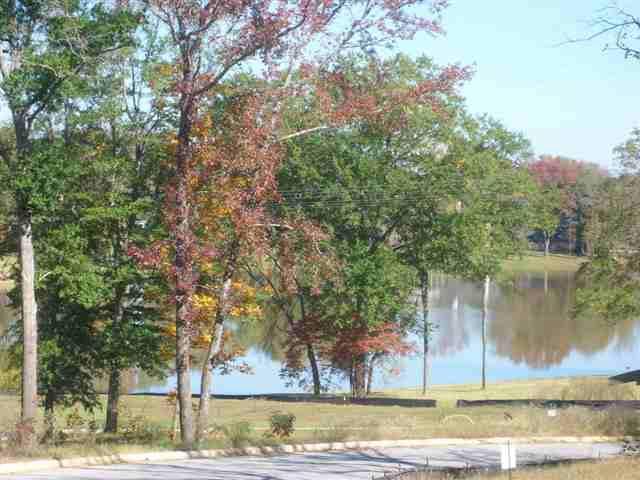 125 Lake Lou Ella, Bullard, TX 75757 (MLS #10013459) :: Griffin Real Estate Group