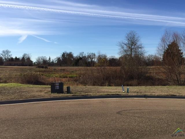 Lot 22 Blue Heron Circle, Mt Pleasant, TX 75455 (MLS #10051056) :: Griffin Real Estate Group
