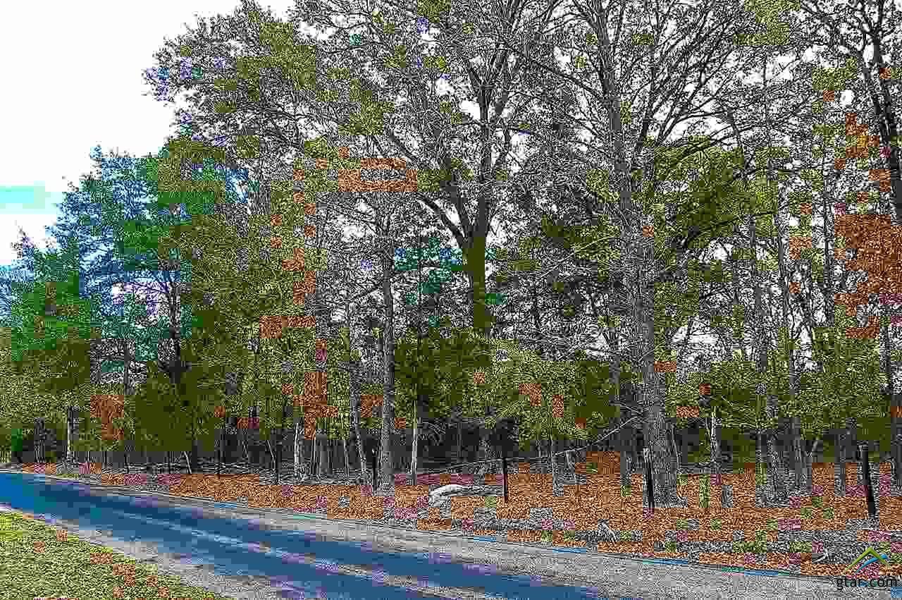 TBD Lot #1 County Road 4114 - Photo 1