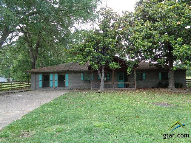 226 County Road 2157, Quitman, TX 75783 (MLS #10083200) :: RE/MAX Impact