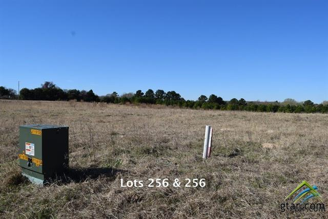 Lot 256 Waters Edge Dr, Larue, TX 75770 (MLS #10086439) :: RE/MAX Professionals - The Burks Team