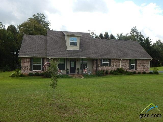 283 Pintail, Gilmer, TX 75645 (MLS #10086472) :: The Wampler Wolf Team