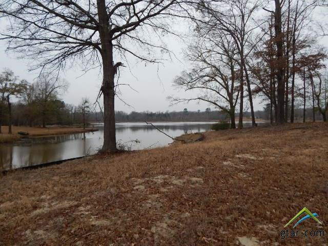 Lot 14 Cardinal Road, Gilmer, TX 75645 (MLS #10089875) :: The Wampler Wolf Team